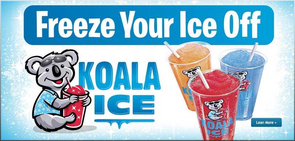 koala-ice-fp-image-1